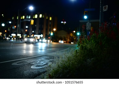 Toronto Nightlife: Streets and intersections of Toronto at night with glowing stop lights and signs and cars. Dystopian feeling.