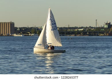 Toronto, Ontario, Canada - June 21, 2018: Laser Class sailing boat in Ontario lake during a sunny spring day, with Toronto skyone at the background.
