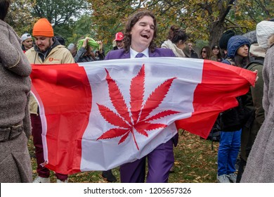 TORONTO, ONTARIO, CANADA - OCTOBER 17, 2018: PEOPLE CELEBRATING CANNABIS LEGALIZATION DAY IN TRINITY BELLWOODS PARK, DOWNTOWN TORONTO.