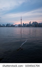Toronto skyline at dusk, seen from Toronto Island.