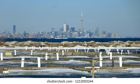 Toronto Skyline Through A Winter Haze