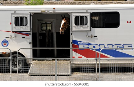 TORONTO-JUNE 23: A police horse stands in a trailer near the Metro Toronto Convention Centre on June 23, 2010 in Toronto. The G20 Summit will be held at the venue.