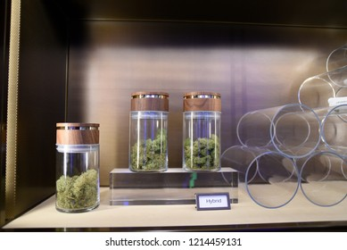 TORONTO-MAY 27: Cannabis plants on display  during the cannabis expo on May 27 2018 in Toronto,Canada