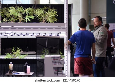 TORONTO-MAY 27: Potential clients discussing methods of home growing cannabis  during the cannabis expo on May 27 2018 in Toronto,Canada