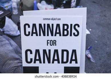 TORONTO/ONTARIO CANADA - 2016 APRIL 20: People celebrating 420 Toronto in yonge dundas square in Toronto.