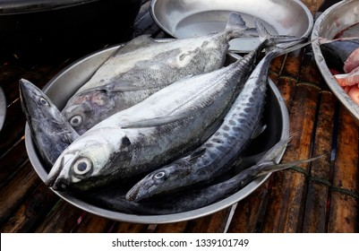 Torpedo or Hardtail or Finletted mackerel scad with Indo-Pacific king mackerels and Black pomfret fish in metal plate at the market, Saltwater fish species in Thailand