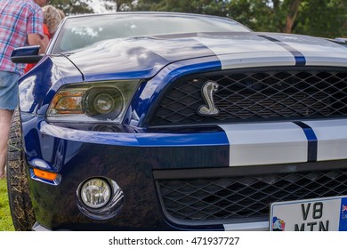 TORPOINT CORNWALL ENGLAND - 7 AUGUST, 2016: Authentic USA Shelby GT 500 V8 Supersnake at the American and Custom Car Show at Mount Edgcumbe House in Cornwall UK. Editorial Use Only