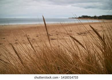 Torquay beach from the sand dunes