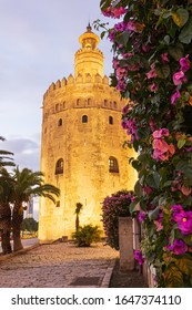 The Torre del Oro in Seville at sunset.