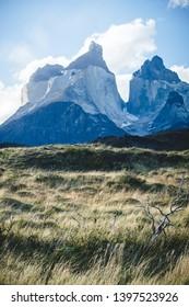 Torres del Paine National Park moutain landscape , Patagonia - Chile ( Los Kuernos Peak )