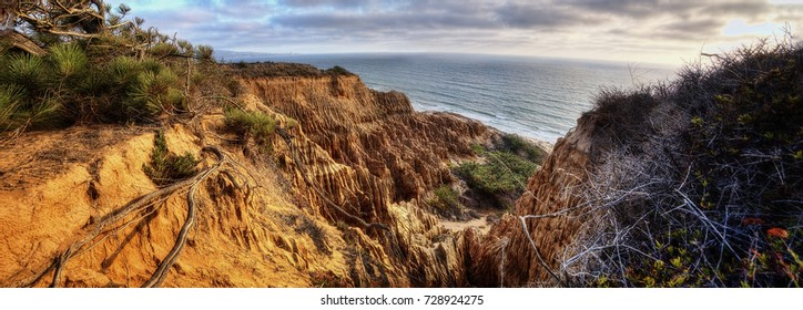 Torrey Pines State Park USA