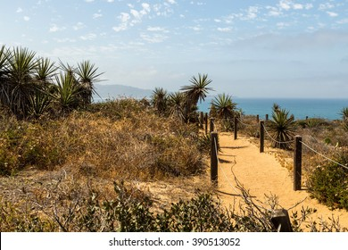 Torrey Pines State Reserve in California