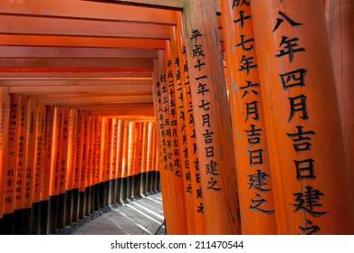 Torri at Fushimi Inari-taisha