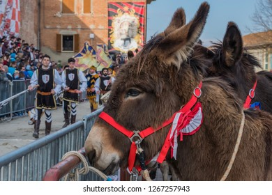 TORRITA DI SIENA, ITALY - MARCH 25: the historic procession marches on the field of the donkeys palio on March 25, 2018 in Torrita di Siena,