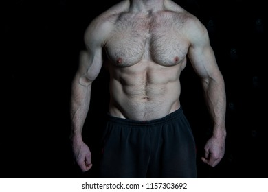 Torso concept. Sexy naked torso. Torso with six pack and ab muscle. Muscular torso and chest.