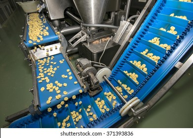 Tortellini Pasta production line. Running on conveyor belt