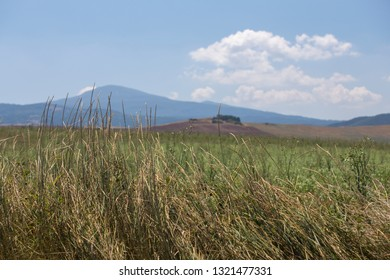 Toscana landscape with hills and dry grass