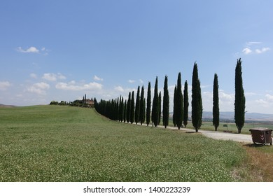 The Toscana travel in italy