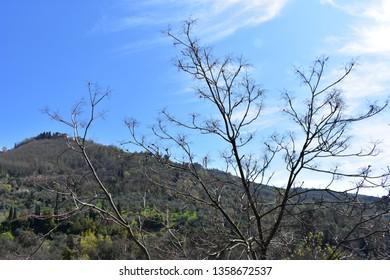 toscany italy landscape