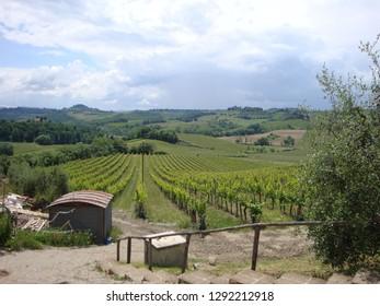 Toscany wine farm