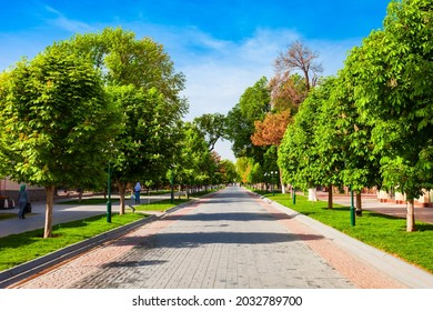 Toshkent Yoli beauty pedestrian street with blooming chestnut trees in Samarkand city centre in Uzbekistan at spring