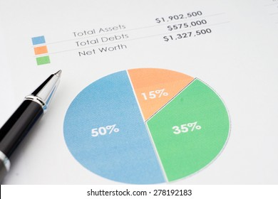 Total Assets, Debts and Net Worth Analysis