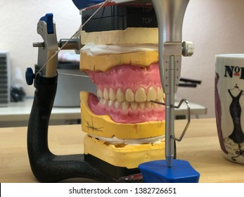 Total dentures in an articulator. Dental lab.