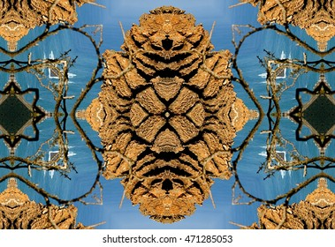 The Totem, symmetric photography, the petrified forest of San Andres de Teixido, discovered and developed by Munimara value, abstract surreal photography North, Cedeira, La Coruna, Galicia, Spain