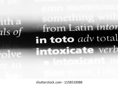 in toto word in a dictionary. in toto concept.