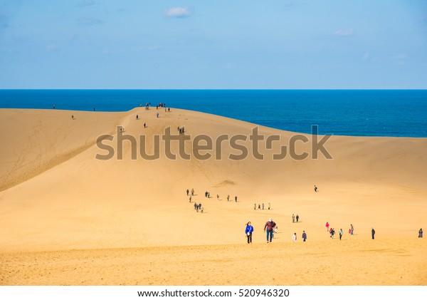 Tottori sand dune in autumn, Japan