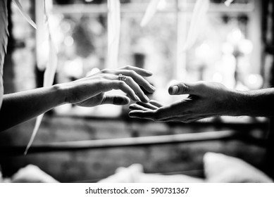 Touching hands of spouses. Black white photo, side view