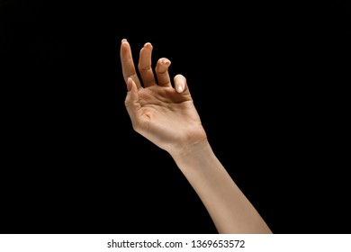 Touching of night. Female hand demonstrating a gesture of getting touch isolated on black studio background. Concept of human emotions, feelings, phycology or business.