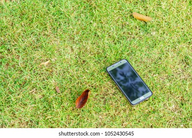 Touchscreen mobile phone on green grass. It is at garden of backyard.