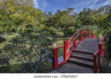 TOULOUSE, FRANCE - OCTOBER 25, 2019: Wonderful Japanese Garden. Japanese Garden situated in public Compans-Caffarelli Park. Japanese Garden constructed between the XIV and XVI Centuries.