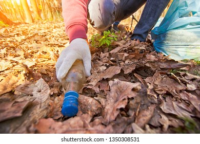 The toung guy picking up the old glass bottle in the forest in the plastic bag during the cleaning campaign