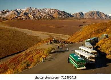 Tour Buses in Denali NP, Alaska, US