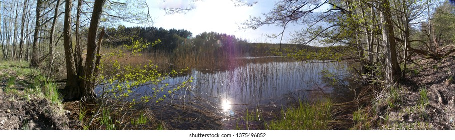 Tourist attraction in Mecklenburg-Western Pomerania: Panorama view of a glacial lake in a forest