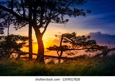 Tourist attractions in Asia with beautiful atmospheric attractive environmental twilight at Phu Soi Dao National Park in of Phitsanulok and Uttaradit Provinces of thailand