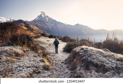Tourist with backpack enjoying the view of snowy Himalayan Mountain Machapuchare in Nepal