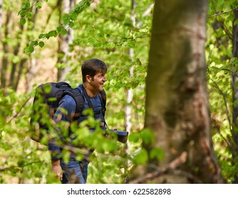 Tourist with backpack hiking in a beech forest