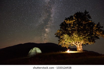 Tourist camping near big tree at night in the mountains. Glowing tent and campfire under wonderful night sky full of stars and Milky way. Travel adventure active lifestyle astrophotography concept