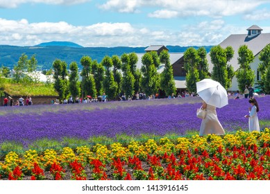 Tourist enjoying the vest violet Lavender flowers field in summer sunny day at Farm Tomita, Furano, Hokkaido, Japan - July 11 2018