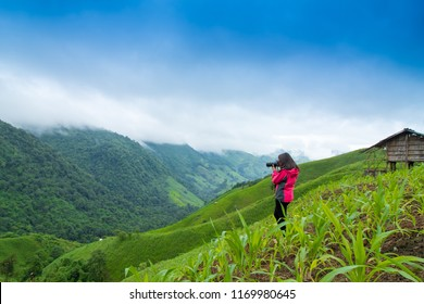 Tourist girl Put on a pink shirt standing on a mountain overlooking a beautiful green valley.