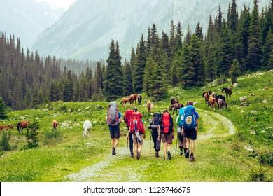 Tourist group hiking in mountains. Treking road  near wild horses. Amazing Landscape. Kyrgyszstan