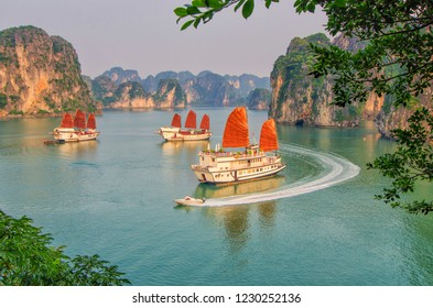 Tourist junk boats in Halong bay. Ha Long bay is the World's Natural Heritage and very famous for its natural beauty of thousands of islands.