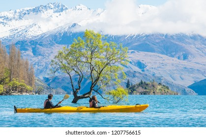 Tourist kayaking pass the iconic lone tree in lake Wanaka the fouth largest lake in New Zealand.