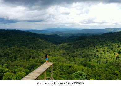 A tourist is looking over a tropical forest canopy from a lookout point