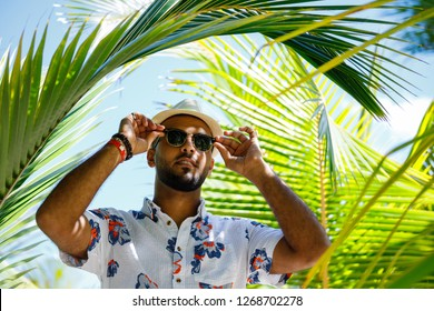 Tourist man fixes his sunglasses as he stands between some coconut trees, man surrounded by coconut branches