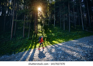 Tourist in orange shirt and backpack walking in the forest at sunrise. Outdoor travel concept