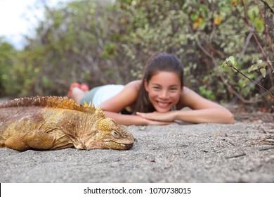 Tourist people enjoying wildlife and nature looking at Galapagos Land Iguana - yellow land iguana in Urbina Bay, Isabela, Galapagos. Amazing animals and wildlife in Galapagos Islands, Ecuador.
